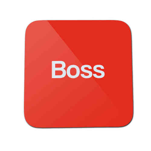 Scouser boss coaster